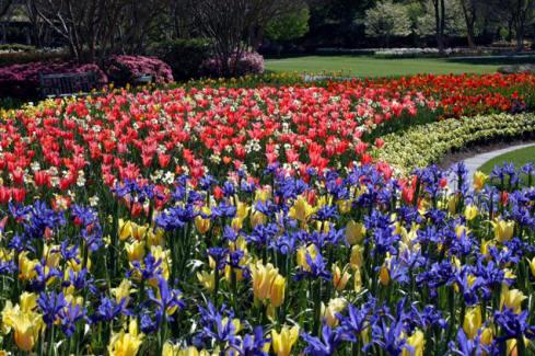 Dallas Arboretum and BotanicalGardens